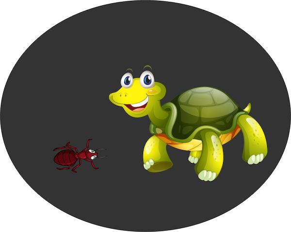 La tortuga y la hormiga